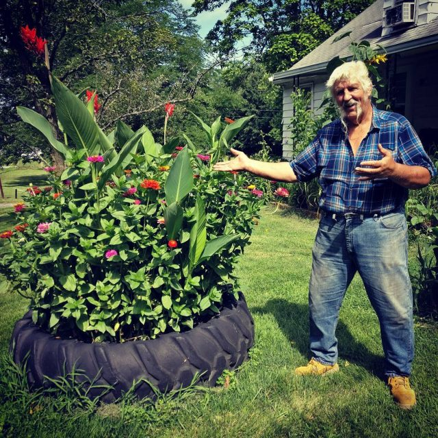 Dad is proud of his tractor tire of zinnias farmlifehellip